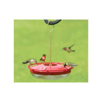 Hummingbird Feeders