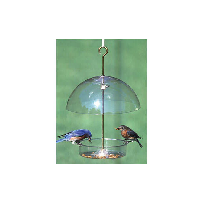 Droll Yankee X1 Seed Saver Bird Feeder, available at The Audubon Shop, the best store for birders, in Madison, CT.