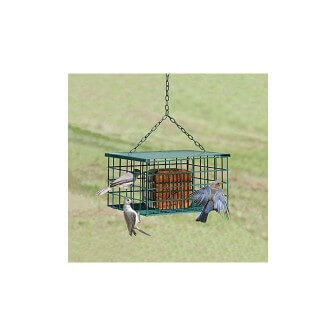 Squirrel Resistant Suet Palace Bird Feeder, available at The Audubon Shop, the best store for birders, in Madison, CT.